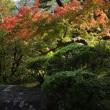 季節の移ろいを感じさせてくれる吉城園