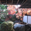萩・城下町を散策(2)