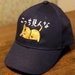 こっち見んな帽子と絶対やると思ってました帽子 @nara_mise