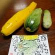 今日は野菜の直売場に並んでいたズッキーニを買ってきた。
