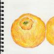 林檎とポンカン