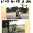 狛犬 No21-460 妻沼町 上根 上根神社