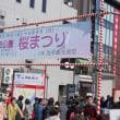隅田公園・牛島神社桜