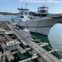 船修理に❗️