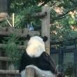 怖い絵展&上野動物園のリーリー