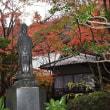 三滝寺 2017 平和大通りイルミネーション