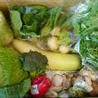 日替わりマルシェ「ポラン広場」の野菜♪