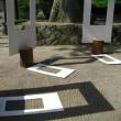 農村舞台アートプロジェクト
