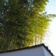 京都② 永観堂-3