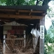 城跡〝鳥取城跡〟山上ノ丸まで
