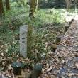 日野市健康づくりウォーキング「色づき始めた小山田緑地を楽しむ」
