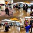 模擬競技会&ハロウィンパーティー続報『福岡市中央区の社交ダンス教室・レンタルスタジオのダンススクールライジングスター』