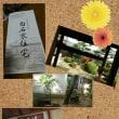 結ぶ会 県立美術館in神無月