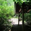 戸倉山、キャンプ場口からハイク