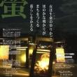ホタルの里の「月夜野百八燈」