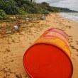 西表島 漂着ゴミ