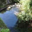 川遊びの始まり (8月13日)