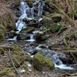 小鹿野両神 日本一のセツブンソウ~丸神の滝
