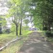朝のお散歩💓
