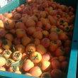 今日の枯露柿(11月14日)
