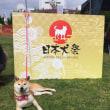 日本犬祭2018