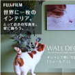 walldecor:fujifilm