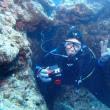 水納島のサンゴ最高ーーー♪