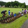 6月21日(木)人権の花、花壇の花の植え付け