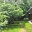 新緑の地蔵院(竹の寺)
