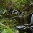 散歩写真 健康の道小野ケ谷コース