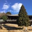 あおによし~奈良の空もよし