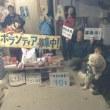 わんにゃん報告Blog-11/5~11/11-