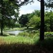 昭和記念公園(その4)