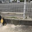 駐車場サインポール取り替え工事