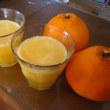 八朔ジュースと蜂蜜レモン