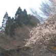 梅咲いて空透けてゆく山のきわ   晴代