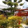 白禿大明神を訪ねる(香川の神社172)