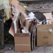 紙など資源ゴミの日