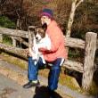 箕面公園滝道の紅葉を観に行く
