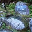 """名水100選の""""ごろごろ水""""(おうちCafeわんこ堂)"""