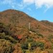 しまなみ海道・名残りの紅葉