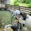 七滝温泉(秋田県鹿角市)