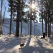 雪山の休日