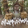 古代出雲王朝ゆかりの地や神話を尋ねて 九州宗像家の祭祀の沖ノ島(実際には行けませんがテレビ番組を見て仰天しました)2017年11月1日