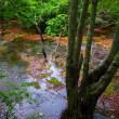 水の有る風景ー16