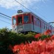 9月19日の神戸電鉄