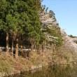 円良田湖に行ってきた。寝過ごしたので