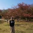 明石公園の紅葉