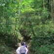 奥日光「刈込湖・切込湖」ハイキング(1)