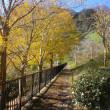 横浜金沢自然公園